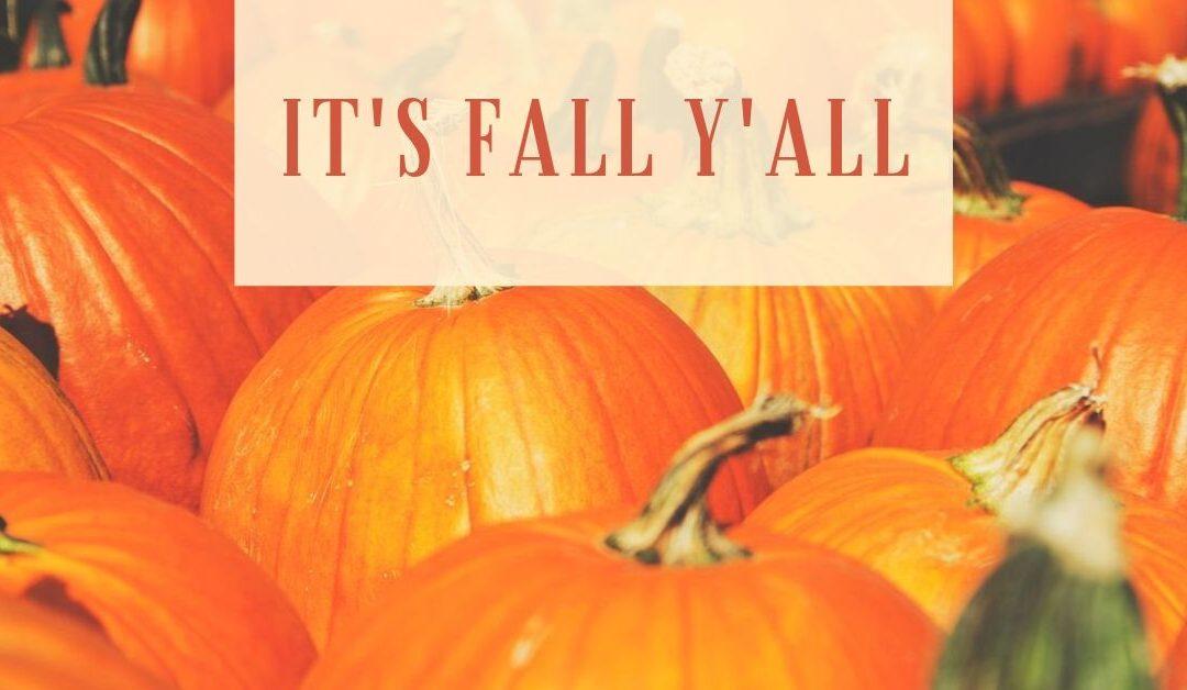 It's Fall Y'all!  Well, kinda!