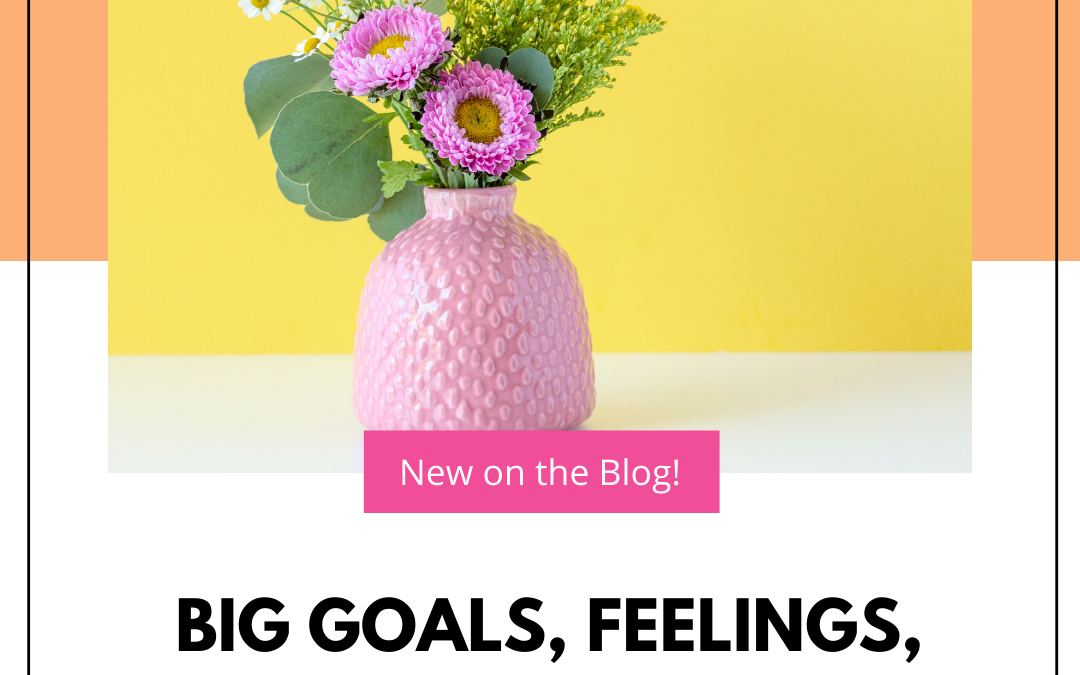 Big Goals, Feelings, and WHY?